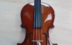 El violín lo habían birlado al descuido