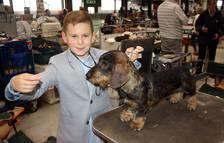 Refena acoge de nuevo la exposición canina