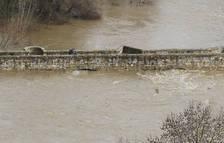 Pamplona eleva la alerta ante el riesgo de avenida del río Arga