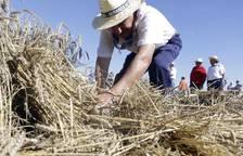 XVIII edición del Día del Mundo Rural en Miranda de arga