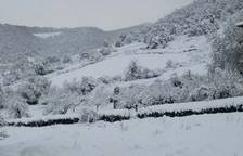 Fotos de la nieve enviadas por los lectores