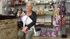 Sandra García Gonzalo acoge a animales sin techo en su peluquería canina