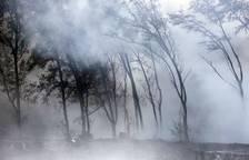 Alerta en Hawái por el avance de la lava del Kilauea