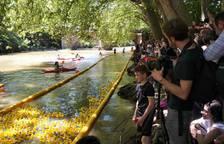 Fotos de la Estropatada en el río Arga