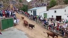 Tercer encierro del Pilón de las fiestas de Falces 2018, 14 de agosto
