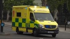 Detenido un hombre tras estrellar su coche contra las barreras del Parlamento británico