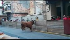 Un toro arranca parte del vallado en Murchante