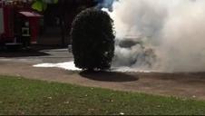 Incendio accidental de un coche en Elizondo (III)