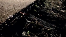 Cuatro jóvenes fallecen en Úbeda (Jaén) tras chocarse frontalmente contra otro vehículo