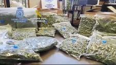 Cae una banda china dedicada al cultivo de marihuana para su venta a traficantes europeos
