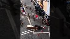 Vídeo del rodaje en Pamplona de la película 'Line Walker II'