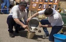 Fotos del día de la cuajada en la Ulzama