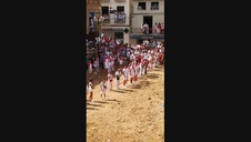 Lanzamiento de melones en Ablitas