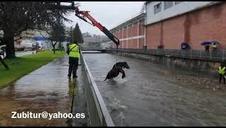 Rescatan a una yegua en el río de Leitza