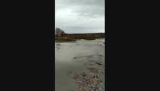 Desbordamiento en el Soto de Berbinzana