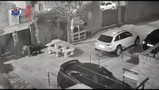 Video del asalto de una vivienda en Navarra