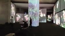 Vídeo | Presentación de la exposición Van Gogh Alive – The Experience en Baluarte.