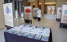 Imagen de una parte de la exposición que alberga el CHN.