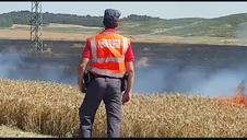 Vídeo: Incendio en el término municipal de Larraga