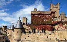 Vista en detalle del Palacio Real de Olite