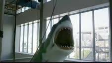 'Bruce', el tiburón de Spielberg, se expone en Los Ángeles