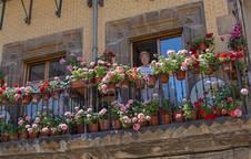 Miren Lourdes Larrucea, ganadora del concurso de embellecimiento, se asoma a su balcón de la plaza de los Fueros.