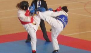 Se celebró el Campeonato Navarro de Kenpo