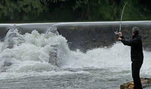 Un pescador del río Bidasoa, en la zona del Pozo de los 50, en Endarlatsa.