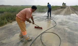 Imagen de dos trabajadores en Novillas (Zaragoza).