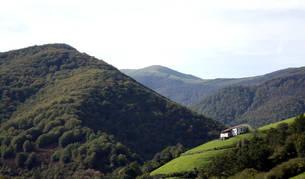 Paraje de Erdiz en el monte Erregerena, territorio disputado por Esteribar y Baztan.