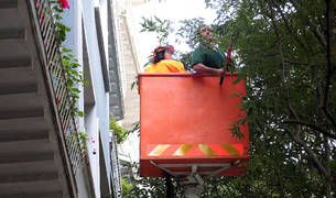 Operarios del Servicio de Jardines cortan las ramas más próximas a los pisos de Sancho el Fuerte.