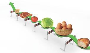 """Representación de la """"carrera de obstáculos"""" de los alimentos"""