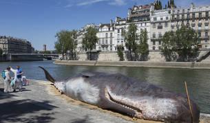 Imagen de la escultura de una ballena encallada en la ribera del río Sena en París, Francia.