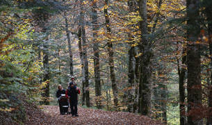 En la imagen de archivo, una familia recorre uno de los senderos de la Selva de Irati.