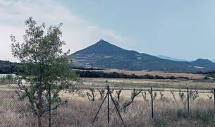 Imagen de los terrenos donde se promueve la planta de lodos de Igúzquiza, en la falda de Montejurra.