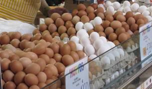 Los huevos son un producto básico en la cesta de la compra de los españoles. El mercado presenta mayor demanda que oferta.