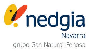 Logo de NEDGIA Navarra.