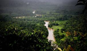 Parte de la Amazonía del estado brasileño de Acre.