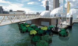 Imagen del parque reciclado de Rotterdam, creado a partir de desechos plásticos del mar.
