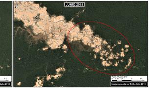 Imágenes de satélite analizadas por el Proyecto de Monitoreo de la Amazonía Andina (MAAP) muestra la deforestación que ha sufrido La Pampa entre enero y junio de 2018.