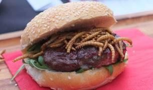 Insectos en el menú: un kilo de grillos, 500 euros