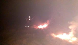 foto de Bomberos Forestales extinguiendo un incendio forestal en Arantza