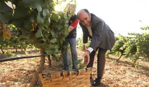 Ayerdi, en la presentación de la campaña  'Bosques y viñedos de misterio'.