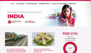foto de Nueva web para empresas navarras que quieran acceder al mercado indio