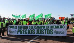 Movilizaciones de agricultores en Almendralejo contra la actual política de precios.