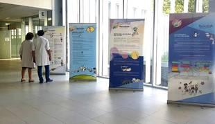 Foto de los paneles informativos sobre las vacunas instalados en el Pabellón C del CHN.