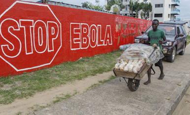 El impacto económico de la epidemia de ébola podría tener consecuencias desastrosas en los países afectados.