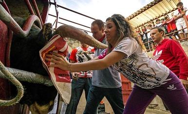 Fiestas 2014 en Lodosa y Villafranca (19 de septiembre)