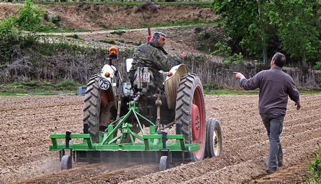 Jaime Zabaleta y Vicente Gorbea aplican en un campo de patatas un sistema mecánico para la eliminación de las malas hierbas