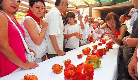 Los asistentes contemplan con curiosidad e incluso fotografían los 37 ejemplares que se presentaron para el tomate más 'feo'.